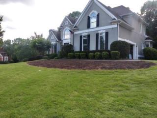 Lawn Maintenance & Yard Cleanups